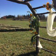 New Leaf Farm 4